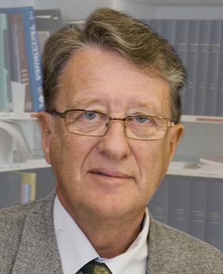 Berndt Ehinger
