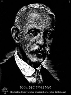 sir frederick hopkins Frederick gowland hopkins was born on june 20, 1861, at eastbourne, england his father, a bookseller in bishopsgate street, london, was much interested in science.